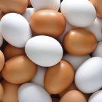 conservare uova in casa sicurezza - TOMARCHIO