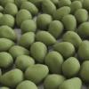olivette di Sant'Agata TOMARCHIO